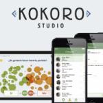 Kokoro Studio; nuestra línea de productos